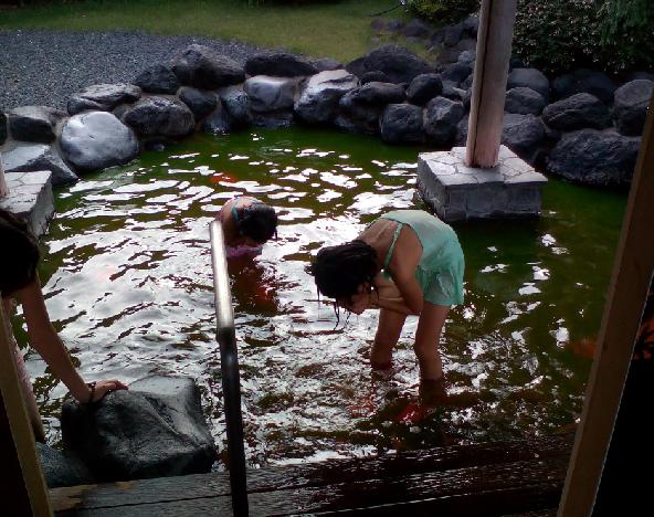 マンゴー風呂