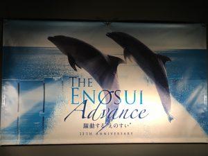【子連れ・江ノ島観光におすすめ】新江ノ島水族館で子連れで楽しめたポイントをご紹介します!