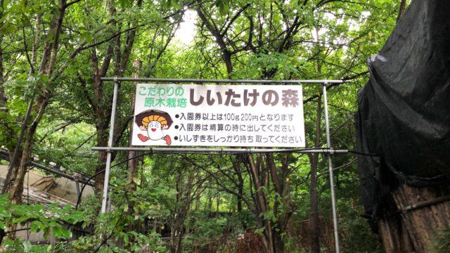 小松沢レジャー農園 しいたけ狩り 4歳子連れ旅