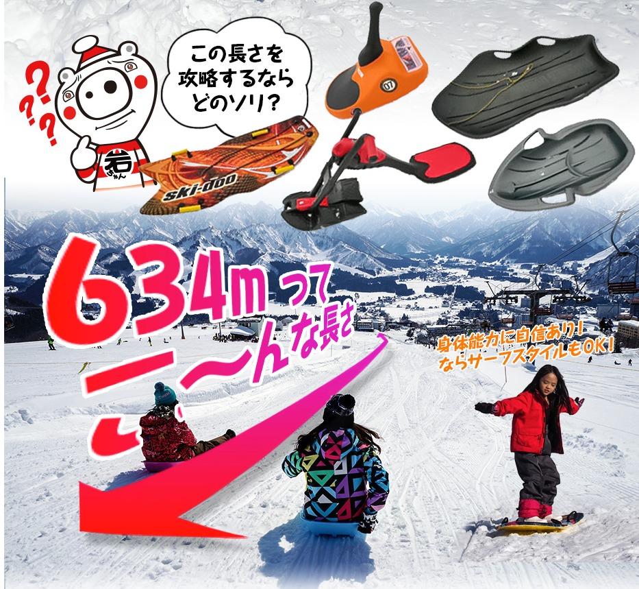 岩原スキー場 5歳子連れ新潟(越後湯沢)スキー旅行 ソリランド